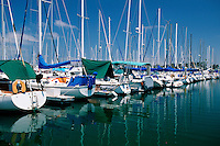 Recreational boating marinas are responsible for water pollution and the destruction of sensitive coastal habitat. California