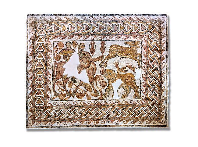 Roman mosaic depicting The Education of Achilles by the Centaur Chiron. Achilles , left, is depicted riding a centaur ( mosaic of its body s missing) and is about to kill a deer. In the bottom right hand corner is a Chimera was, according to Greek mythology, a monstrous fire-breathing hybrid creature of Lycia in Asia Minor, composed of the parts of more than one animal. The mosaic follows the story of Bellerophon who was a 'great slayer of monsters'. From Belalis Major (Henshir El-Fawar ) in the Beja region of Tunisia. Early 7th century AD.Roman mosaics from the north African Roman province of Africanus . Bardo Museum, Tunis, Tunisia.