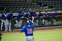 AZL Cubs bench cheers on during an at-bat by second baseman Carlos Sepulveda (16) during a game against the AZL Giants on September 7, 2017 at Scottsdale Stadium in Scottsdale, Arizona. AZL Cubs defeated the AZL Giants 13-3 to win the Arizona League Championship Series two games to one. (Zachary Lucy/Four Seam Images)
