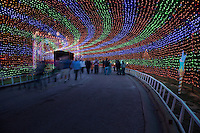 Walking through the Entrance to the Zilker Park Trail of Lights is a surreal experience with millions of colored lights