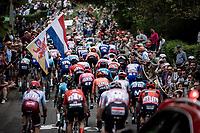 peloton up the infamous Mur de Huy.<br /> <br /> 83th Flèche Wallonne 2019 (1.UWT)<br /> 1 Day Race: Ans – Huy 195km<br /> <br /> ©kramon