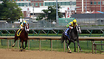June 21, 2014:  Two year old filly Promise Me Silver and jockey Robby Albarado win the six furlong Debutante Stakes at Churchill Downs, with Unbridled Reward and Alan Garcia second.  Owner Robert G. Luttrell, trainer Bret Calhoun. ©Mary M. Meek/ESW/CSM