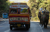 Elephants and trucks ont he road from Mumbai to Goa, the old and new meet a way of transportation,India