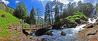 alpine landscape paesaggi di montagna alps alpi boschi foreste laghi montagne lakes glaciers forest trentino dolomiti