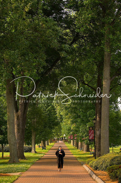 A student walks alone on a tree-lined walkway on the way to the graduation ceremony at Belmont Abbey College Graduation in Belmont Abbey.
