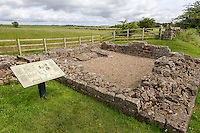 Cumbria, England, UK.  Piper Sike Turret 51A on Hadrian's Wall, showing remains of stone platform for a ladder to reach upper level.