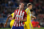 Atletico de Madrid´s Diego Godin reacts during Champions League soccer match between Atletico de Madrid and FC Astana at Vicente Calderon stadium in Madrid, Spain. October 21, 2015. (ALTERPHOTOS/Victor Blanco)