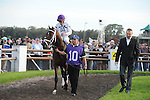 Berthen with Ramon Domingquez wins The Sam F. Davis Stakes at Tampa Bay Downs in Oldmar Fl 2.12.2011