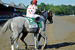 Zo Impressive (no. 5), ridden by Rajiv Maragh and trained by Thomas Albertrani, before the 96th running of the grade 1 Coaching Club American Oaks for three year old fillies on July 21, 2012 at Saratoga Race Track in Saratoga Springs, New York.  (Bob Mayberger/Eclipse Sportswire)