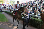 October 03, 2015, Paris, Longchamp -  Cirrus des Aigles with Christophe Soumillon up in the parade ring before the Qatar Prix Dollar (Gr. II)