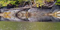British Columbia Coastline - Possible Inspiration for Totem Poles?