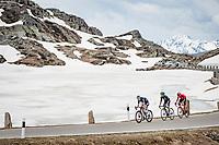 Gianni Vermeersch (BEL/Alpecin-Fenix) & co up the Passo San Bernardino (2065m/SUI)<br /> <br /> 104th Giro d'Italia 2021 (2.UWT)<br /> Stage 20 (through Switzerland) from Verbania to Valle Spluga-Alpe Motta (164km)<br /> <br /> ©kramon