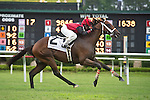 21 July 2012: I'm Boundtoscore wins the Chenery Stakes at Colonial Downs in New Kent, Va. I'm Boundtoscore is owned by Troy Rankin and Joe Davis and is trained by Troy Rankin. (Susan M. Carter/Eclipse Sportswire)