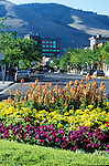 A flower garden on Front street in Missoula, Montana