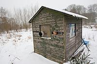 Kind, Junge fotografiert aus einer Tarnhütte heraus Vögel bei der Winterfütterung, Vogelfütterung, Fütterung im Winter, Vogelfotografie, Vogel-Fotografie