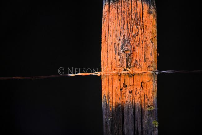A fence post painted orange designating no trespassing in Montana