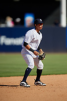 New York Yankees third baseman Oswaldo Cabrera (97) during a Grapefruit League Spring Training game against the Toronto Blue Jays on February 25, 2019 at George M. Steinbrenner Field in Tampa, Florida.  Yankees defeated the Blue Jays 3-0.  (Mike Janes/Four Seam Images)