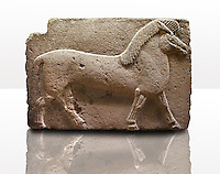 Picture of Phrygian releif sculpture Orthostat of a horse from Kucukevier, Ankara, Turkey. Museum of Anatolian Civilisations, Ankara. 7th century BC. Note the stylised leg muscels. 3