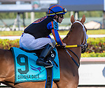 February 29, 2020: #9 Tonalist's Shape with jockey Tyler Gaffalione on board, wins the Davona Dale Stakes G2 on February 29th, 2020 at Gulfstream Park in Hallandale Beach, Florida. LizLamont/Eclipse Sportswire/CSM