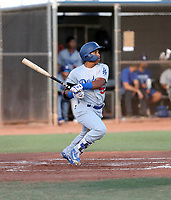 Jorbit Vivas - 2019 AZL Dodgers (Bill Mitchell)