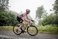 Polka Dot Jersey / KOM leader Tim Wellens (BEL/Lotto-Soudal) up the very steep section (+16%) of the Mur de Péguère (Cat1/1375m/9.3km/7.9%)<br /> <br /> Stage 15: Limoux to Foix (185km)<br /> 106th Tour de France 2019 (2.UWT)<br /> <br /> ©kramon