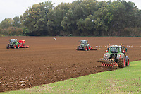 1.10.2020 Ploughing drilling and power harrowing in Lincolnshire <br /> ©Tim Scrivener Photographer 07850 303986<br />      ....Covering Agriculture In The