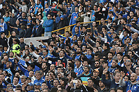 BOGOTA - COLOMBIA, 11-02-2018: Hinchas de Millonarios animan a su equipo durante el encuentro entre Millonarios y Patriotas Boyacá por la fecha 2 de la Liga Aguila I 2018 jugado en el estadio Nemesio Camacho El Campin de la ciudad de Bogotá. / Fans of Millonarios cheer for their team during the match between Millonarios and Patriotas Boyaca for the date 2 of the Liga Aguila I 2018 played at the Nemesio Camacho El Campin Stadium in Bogota city. Photo: VizzorImage / Gabriel Aponte / Staff.
