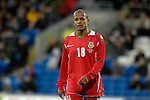 International Friendly match between Wales and Scotland at the new Cardiff City Stadium : Robert Earnshaw of Wales.