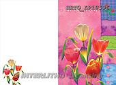 Alfredo, FLOWERS, paintings, BRTOLP18596,#F# Blumen, flores, illustrations, pinturas