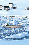 Inuit de Tiniteqilaq revenant en bateau de la chasse au milieu des Icebergs. Groënland (côte Est). Région d'Angmagssalik (Ammasalik ou Tassilaq). Eskimos from Tiniteqilaq on a boat on the middle of icebergs. Greenland (East coast).