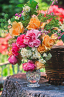 Heirloom roses in bouquet with Rosa 'Lady Hillingdon' (ylw) 'Fantin Latour' (pale pink), 'Mme Ernst Calvat' on stump in garden