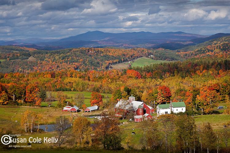 Autumn color at the Bogie Mountain Farm in Barnet, Northeast Kingdom, VT, USA