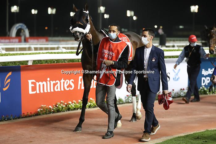 March 27 2021: JESUS' TEAM #7, in the post parade for the Dubai World Cup at Meydan Racecourse, Dubai, UAE. Shamela Hanley/Eclipse Sportswire/CSM