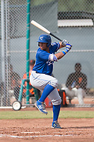 Meibrys Viloria (19) of the Kansas City Royals at bat during an Instructional League game against the San Francisco Giants at the Giants Training Complex on October 17, 2017 in Scottsdale, Arizona. (Zachary Lucy/Four Seam Images)