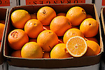 California seedless navel oranges. Lewisburg farmers market.