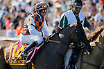ARLINGTON HEIGHTS, IL - AUGUST 13: Pretty Girl #14, ridden by Brice Blanc, during the post parade before the Beverly D. Stakes at Arlington International Racecourse on August 13, 2016 in Arlington Heights, Illinois. (Photo by Jon Durr/Eclipse Sportswire/Getty Images)