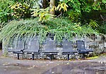 Fall color and rain highlight metal seats on plaza in an Auburn, WA city park.