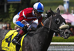 Fire With Fire with Tyler Baze aboard wins the Grade II San Luis Rey Stakes at Santa Anita Park in Arcadia, California on March 22, 2014. (Zoe Metz/ Eclipse Sportswire)