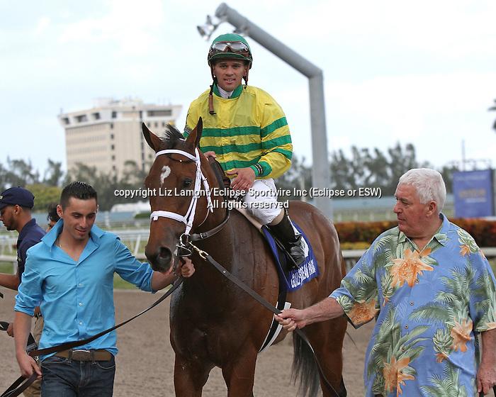 Onlyforyou  with jockey Javier Castellano on board wins the Forward Gal Stakes G2 at  Gulfstream Park, Hallandale Beach, Florida 01-25-2014