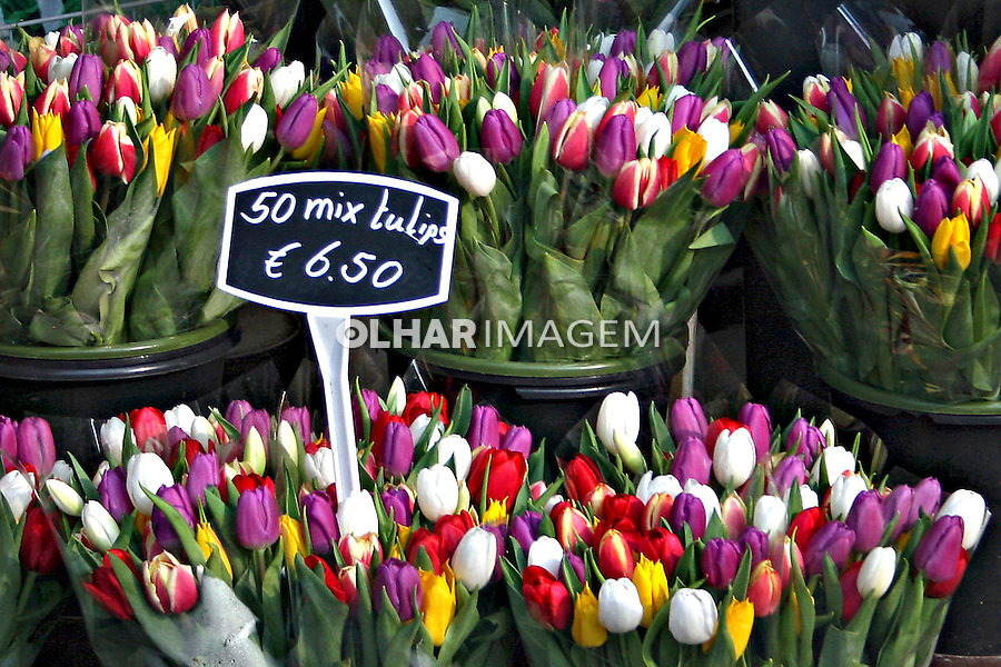 Tulipas a venda no Mercado das flores. Amsterdã, Holanda. 2007. Foto:Marcio Nel Cimatti.