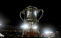 The Bledisloe Cup on display during the Bledisloe Cup rugby match between the New Zealand All Blacks and Australia Wallabies at Eden Park in Auckland, New Zealand on Saturday, 14 August 2021. Photo: Simon Watts / lintottphoto.co.nz / bwmedia.co.nz