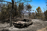 Pictured: A destroyed car amongst burned trees in Thrakomakedones near Athens, Greece. Saturday 07 August 2021<br /> Re: Forest fire in Varibobi, in the areas north of of Athens, Greece.