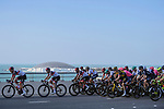 The peloton led by UAE Team Emirates during Stage 7 of the 2021 UAE Tour running 165km from Yas Island to Abu Dhabi Breakwater, Abu Dhabi, UAE. 27th February 2021.<br /> Picture: LaPresse/Fabio Ferrari   Cyclefile<br /> <br /> All photos usage must carry mandatory copyright credit (© Cyclefile   LaPresse/Fabio Ferrari)