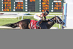 NEW ORLEANS, LA - FEBRUARY 25: Girvin #2, ridden by Brian Hernandez, Jr, wins the Risen Star. on Risen Star Stakes Day at Fair Grounds Race Course on February 25, 2017 in New Orleans, Louisiana. (Photo by Jarrod Monaret/Eclipse Sportswire/Getty Images)
