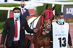 March 27 2021: RS MONEY TO BURN (FR) #13, in the post parade for the Dubai Kahayla Classic at Meydan Racecourse, Dubai, UAE. Shamela Hanley/Eclipse Sportswire/CSM