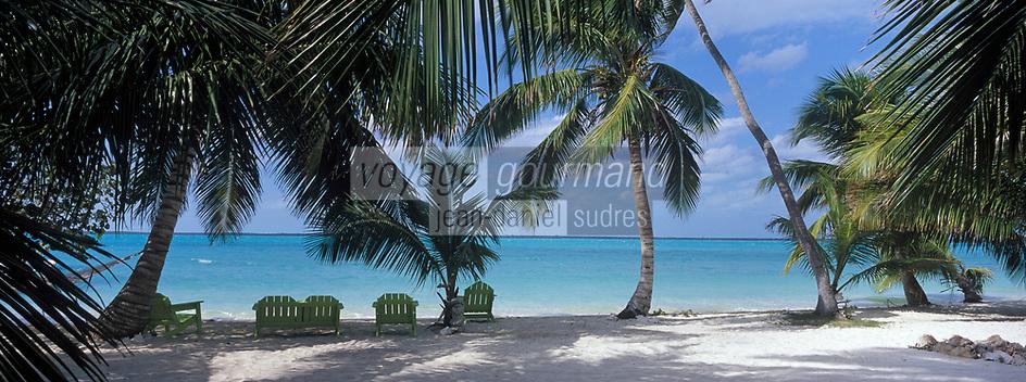 Iles Bahamas /Ile d'Andros/South Andros: la plage et les palmiers de l'Eco-Lodge - Tiamo Resorts - Vue sur l'océan Atlantique // Bahamas Islands / Andros Island / South Andros: The Beach and Palm Trees of Eco-Lodge - Tiamo Resorts - Atlantic Ocean View