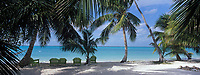 Iles Bahamas /Ile d'Andros/South Andros : la plage et les palmiers de l'Eco-Lodge - Tiamo Resorts - Vue sur l'océan Atlantique // Bahamas Islands / Andros Island / South Andros: The Beach and Palm Trees of Eco-Lodge - Tiamo Resorts - Atlantic Ocean View