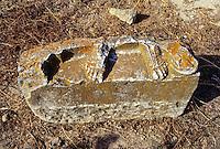 Carthage, Tunisia.  Roman Ruins, Antonin Baths.  Feet in Stone.  Remnant of a Statue.