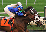 27 Sept 2008: Black Seventeen (7) pushes past Fabulous Strike to score an upset win as the highest price horse in the field of the Vosburgh Handicap at Belmont Park in Elmont, New York on Jockey Club Gold Cup Day.