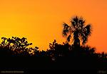 Sunrise, Bunche Beach, Fort Myers, Florida